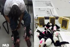 Video: Người đàn ông có nhiều chim quý bị kiểm tra ở sân bay!