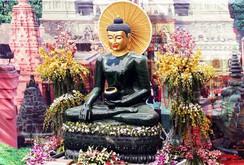 Bản tin NLĐ ngày 17-3: Tượng Phật bằng ngọc lớn nhất thế giới về Quảng Bình