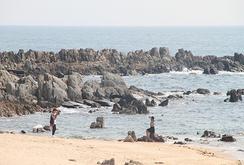 Bản tin NLĐ ngày 30-9: Hà Tĩnh phản đối ý tưởng Tour du lịch cá – thép Formosa