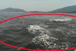Bản tin NLĐ ngày 6-5: Xuất hiện vệt nước đen sẫm trên biển Hà Tĩnh