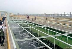 Bản tin NLĐ ngày 8-9: Bộ trưởng Trần Hồng Hà yêu cầu Formosa nuôi cá ở bể sinh học