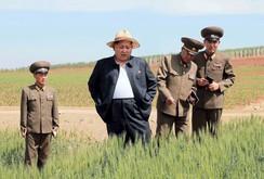 Bản tin NLĐ ngày 20-6: Kim Jong-un ra lệnh truy lùng gián điệp trên toàn quốc