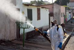 Phóng sự: Bùng phát dịch Zika ở Singapore, Việt Nam cần cảnh giác