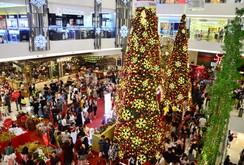 Ghi nhanh: Ngắm những cây thông Noel lung linh tại TP HCM
