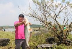 Tấp nập bắt cá ở hồ thủy điện Trị An