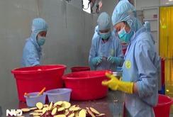 LĐLĐ tỉnh Lâm Đồng: Đối thoại giữa công đoàn-doanh nghiệp-công nhân để hiểu nhau hơn