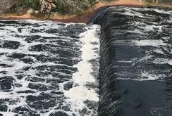 Bản tin NLĐ ngày 15-6: Kênh Ba Bò tái ô nhiễm rất nặng
