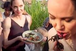 Clip: Xem Angelina Jolie chế biến, ăn dế, bò cạp, nhện ở Campuchia