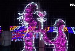 Rực rỡ lễ hội đèn led ở Thảo Cầm Viên