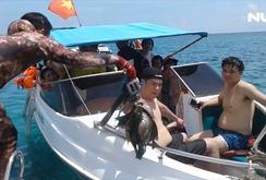 Hè đến, du khách đổ ra Phú Quốc lặn biển đâm cá, ngắm san hô