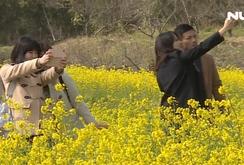 Chiba - Nhật Bản - nơi thu hút khách du lịch và người lao động Việt Nam