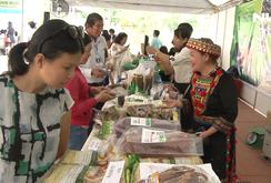 TP HCM lần đầu tổ chức lễ hội sức khỏe và dinh dưỡng