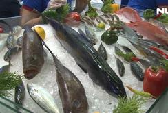 Khai mạc hội chợ Thủy sản quốc tế với 374 gian hàng của 14 quốc gia