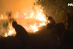 Cháy rừng kinh hoàng ở Quảng Bình, hàng trăm hecta bị thiêu rụi