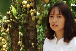 Rộn ràng mùa dâu da ở Đồng Nai