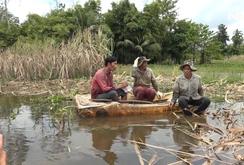 Ghi nhanh: Nông dân trồng mía trắng tay vì lũ