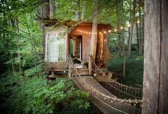 Ngắm những ngôi nhà trên cây ấn tượng