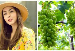 Tăng Thanh Hà khoe khu vườn bình yên trĩu quả