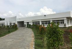 Phát triển nguyên liệu cho ngành giấy