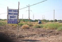 Đất nền vùng ven TP HCM đã hết sốt?