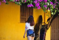 Ngắm nhà cổ Hội An đẹp lịm tim với giàn hoa giấy