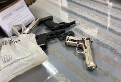 Bị bắt vì mang 3 khẩu súng từ Pháp về Việt Nam