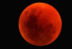 Ghi nhanh: Người dân TP HCM thích thú chứng kiến sự kiện thiên văn thế kỷ