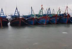 Phú Yên: Chạy đua với bão số 5