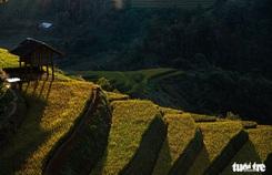 Đuổi theo mặt trời ngắm ruộng bậc thang đẹp như tranh vẽ