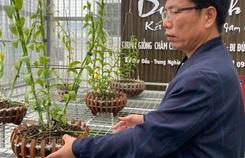 Chuyển hướng sang lan đột biến, Lê Thành Dư thành ông chủ vườn lan tiền tỉ