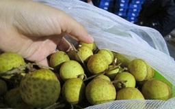 """""""Nhãn Việt Nam mình"""" lấy lòng người tiêu dùng Úc"""