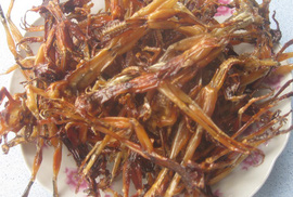 Khô nhái, món ngon Bảy Núi