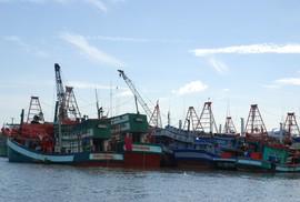 Bà Rịa - Vũng Tàu: Ứng phó bão, cấm tàu cá ra khơi