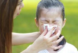 Probiotics giúp phòng ngừa cảm cúm