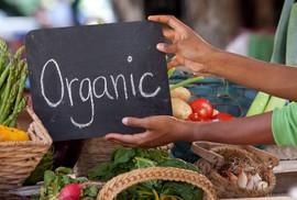 """Thực phẩm organic nở rộ ở thị trường """"nhà giàu"""""""