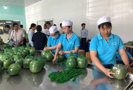 Đại gia bán lẻ Thái Lan mở trạm trung chuyển trái cây ở miền Tây