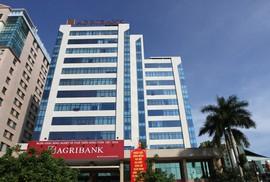 Nhóm Việt kiều Thái Lan muốn chi hơn 500 tỉ đồng mua công ty đang thua lỗ của Agribank