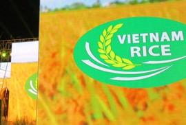 Lần đầu tiên Việt Nam có logo thương hiệu gạo Quốc gia