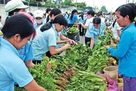 Thanh Hóa: Bảo đảm an toàn chất lượng bữa ăn cho NLĐ
