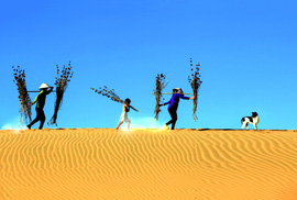 Khai tâm từ cát