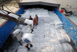 """Xuất khẩu gạo, """"tranh mua tranh bán là lẽ tự nhiên"""""""