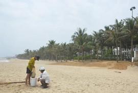 """Bãi biển miền Trung bị """"xẻ thịt"""": Đường của dân thành của resort"""