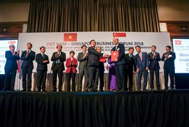 C.T Group ký nhiều thỏa thuận tại Diễn đàn Doanh nghiệp Việt Nam - Singapore