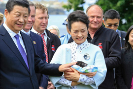Úc: Bang Tasmania e ngại dự án 100 triệu USD của Trung Quốc