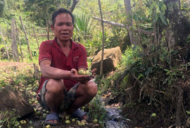 """Sự thật về suối """"nước đắng"""" chữa bệnh ở Kon Tum"""