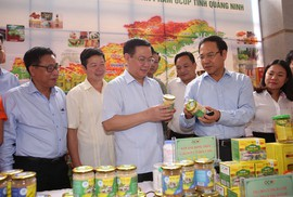 """Phó Thủ tướng Vương Đình Huệ: """"Chương trình OCOP, hãy gắn sao vào lòng dân"""""""