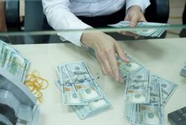 Giá USD tự do lập đỉnh mới, cán mốc 23.350 đồng/USD
