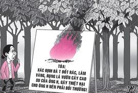 """Tây Ninh: Bị """"lôi"""" ra tòa vì... đốt rác 12 ngày đêm"""