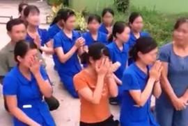 Kỷ luật hàng loạt cán bộ vụ các cô giáo quỳ khóc xin dạy học