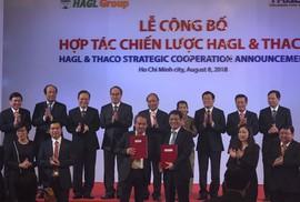 Trường Hải chi 1 tỉ USD vực dậy HAGL